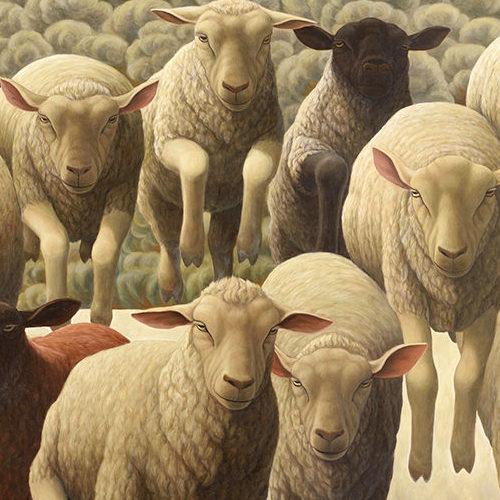 眼光鋭い13匹の羊たち