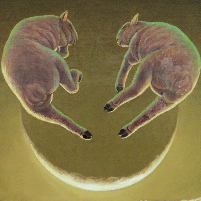 七月七日の羊たち