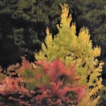 華やかに輝く人生の秋に。